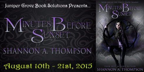 Minutes Before Sunset Tour Banner