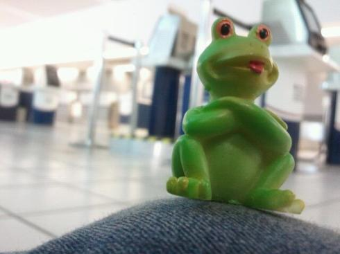 "As an ""extra"" to my life: I have a collection of frogs. Don't ask me why, because I honestly have no clue. People seem to buy them for me, and this is my most recent one (of 6). He's from Puerto Rico."