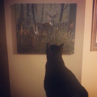 "I thought this was a good picture for ""perspective."" Bogart likes art as much as me, but his kitty perspective is probably different than mine."