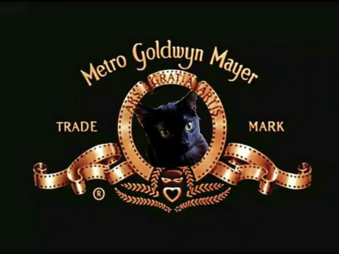 This is not the real trademark. That is my cat.