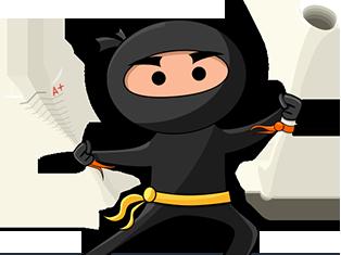 essay ninja