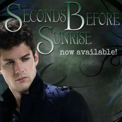 The Seconds Before Sunrise paperback is back up! And it's 20% off.