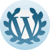 #1 Referrer was WordPress' Reader