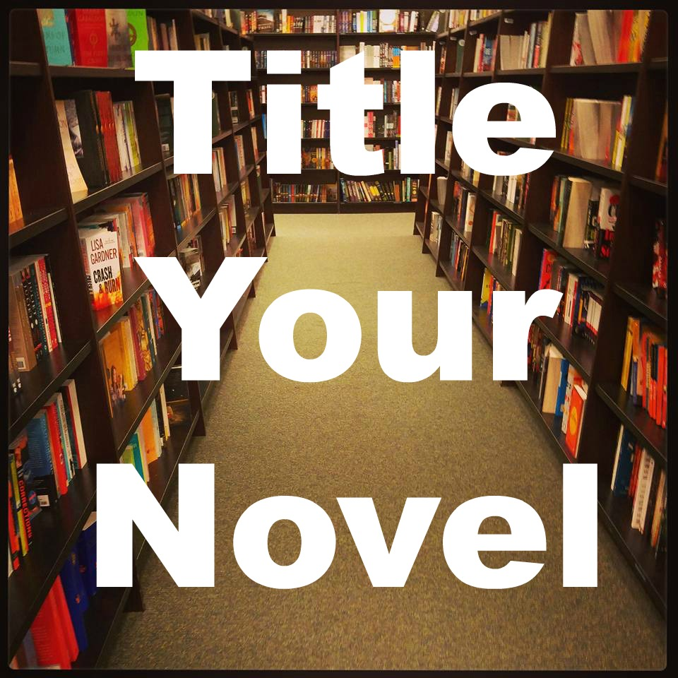 #1 SEO Term was Title Your Novel