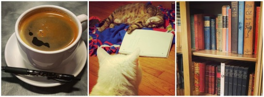 My average day as an author always includes three things: coffee, cats, and books.