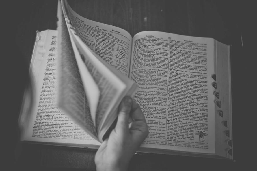 books-writing-reading-sonja-langford-large