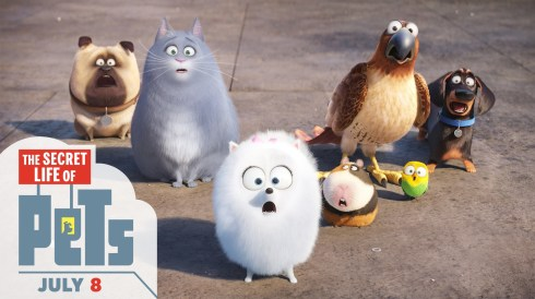 The Secrets Life of Pets