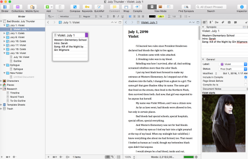 Scrivener Double Screen
